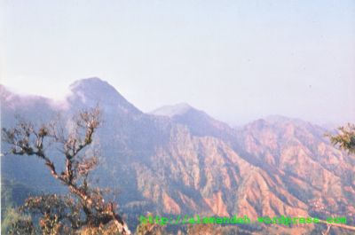 puncak-puncak gunung Muria