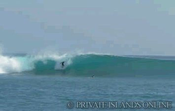 surfing-at-macaronis-island