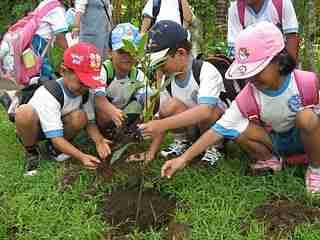 Menanam pohon membuat anak mencintai lingkungan