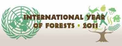 Logo tahun hutan internasional 2011