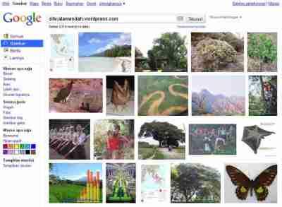 Tampilan galeri gambar alamendah's blog