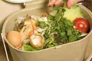 Cara Membuat Kompos dari Sampah Bagi Rumah Tan