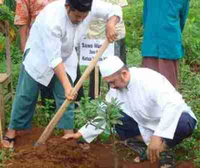 Menanam pohon investasi surga