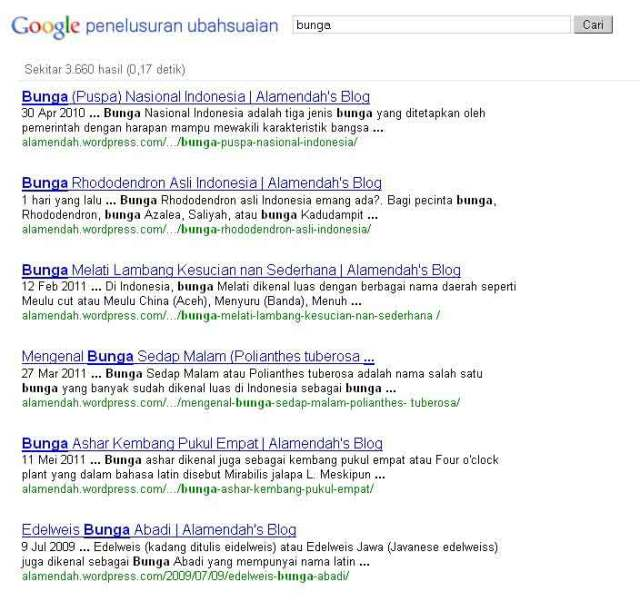 Hasil Penelusuran Google Custom Search Engine