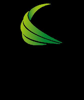 Tahun Internasional Energi Terbarukan