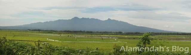 Gunung Muria