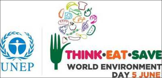 logo-hari-lingkungan-hidup-2013[1]