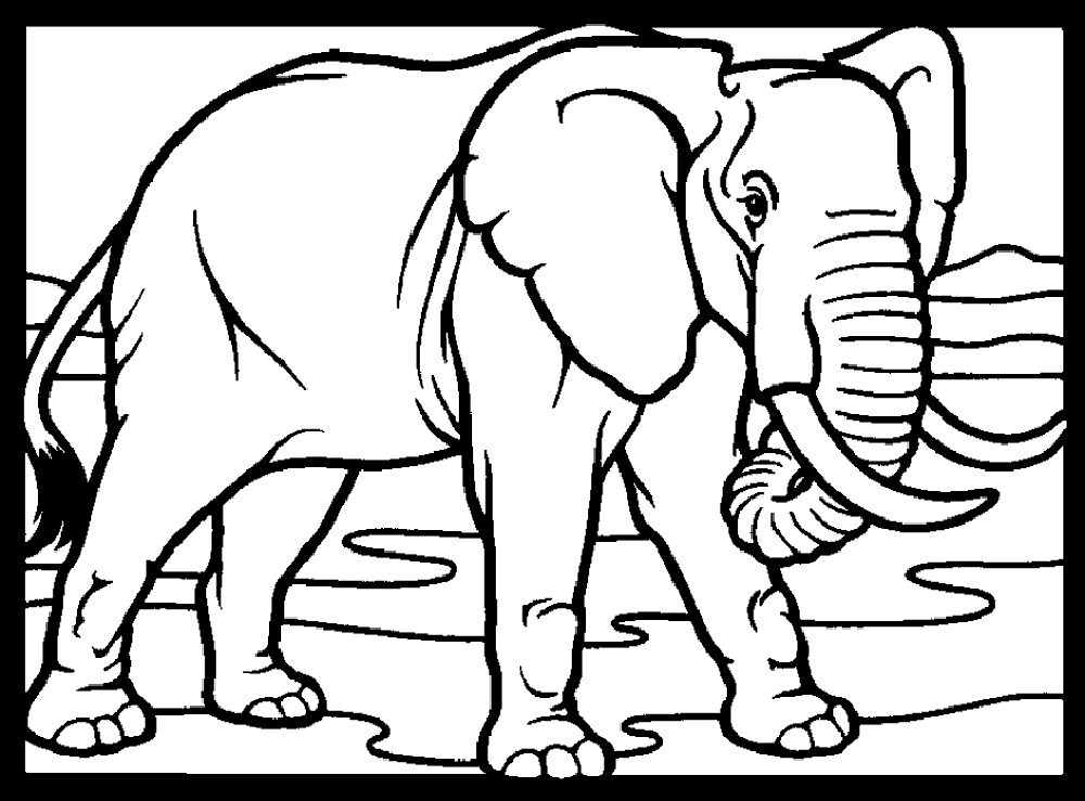 Download Mewarnai Gambar Gajah Alamendah S Blog