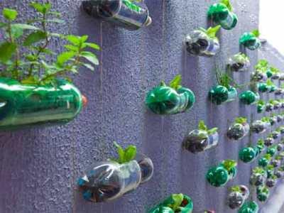 Botol air minum di-recycle menjadi pot tanaman