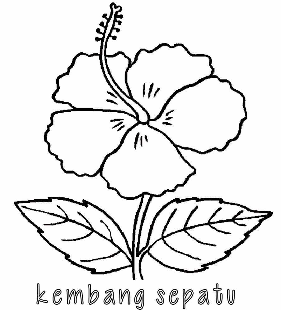 Kumpulan Mewarnai Gambar Bunga Indonesia