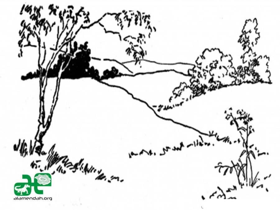 Mewarnai Gambar Pemandangan Alam Hitam Putih 03 Alamendahs Blog