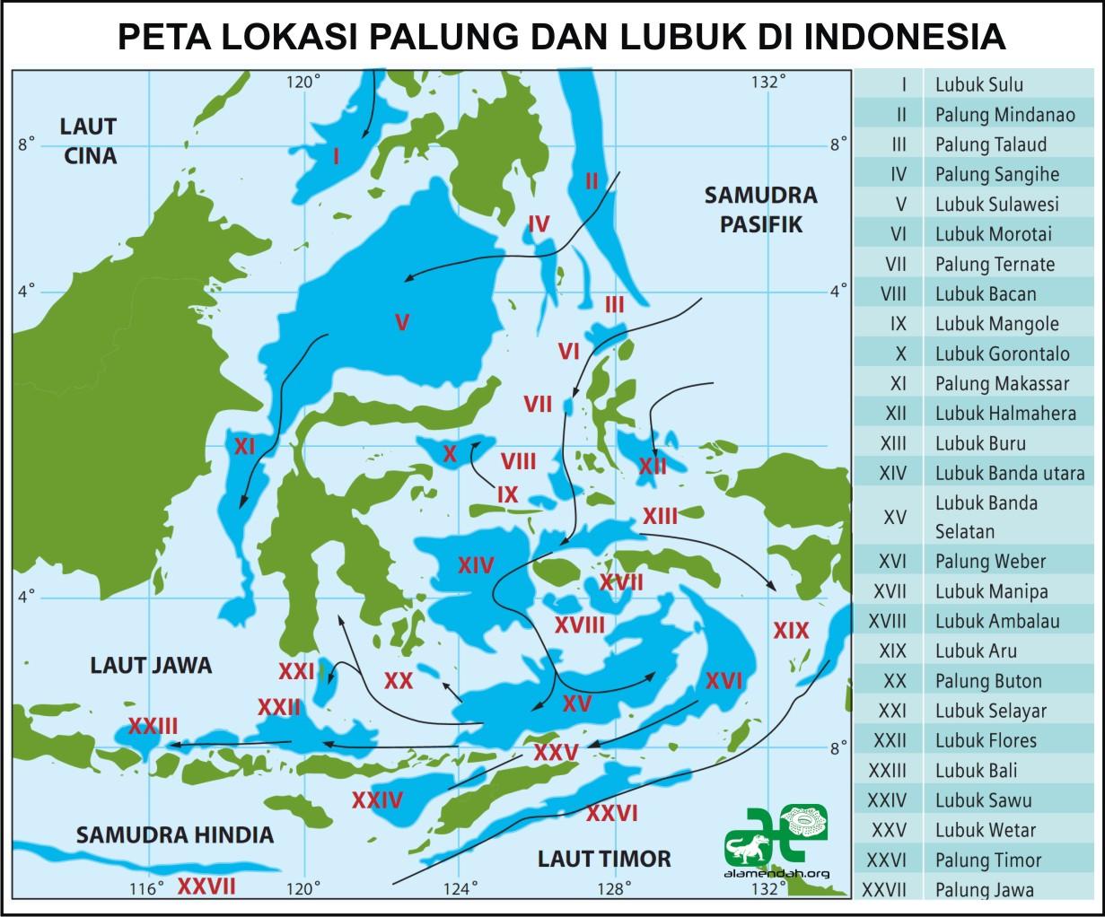 Indonesia dengan si cantik dikebon 4