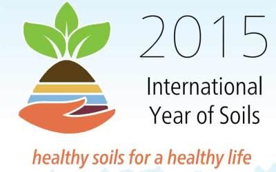 2015, Tahun Tanah Internasional