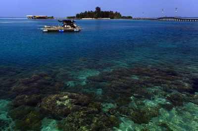 Dive Spot Pulau Sepa Kep. Seribu