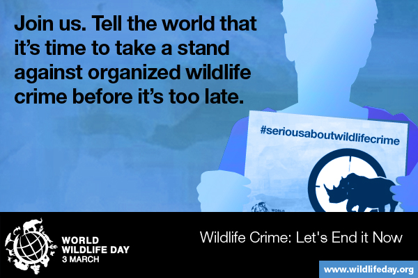 Media Gambar World Wildlife Day 1