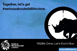 Media Gambar World Wildlife Day 2