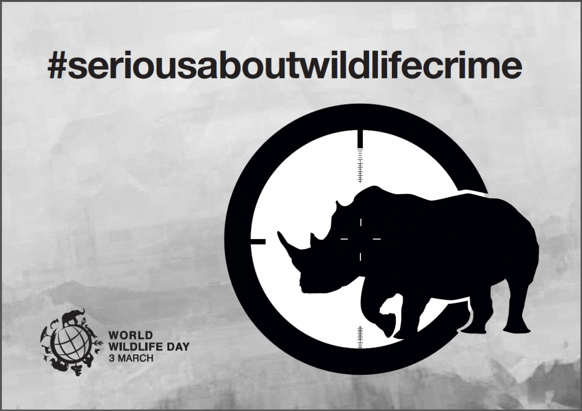 Kumpulan Poster World Wildlife Day Alamendah S Blog