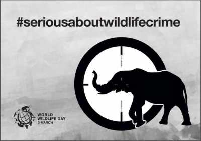 Poster World Wildlife Day 2015