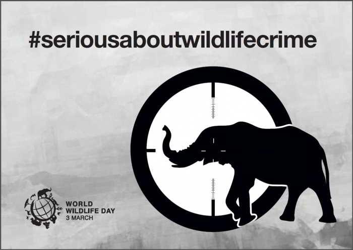 Poster World Wildlife Day 2015