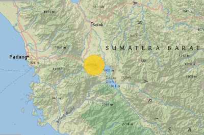 Kodok Sumatera (Duttaphrynus sumatranus)
